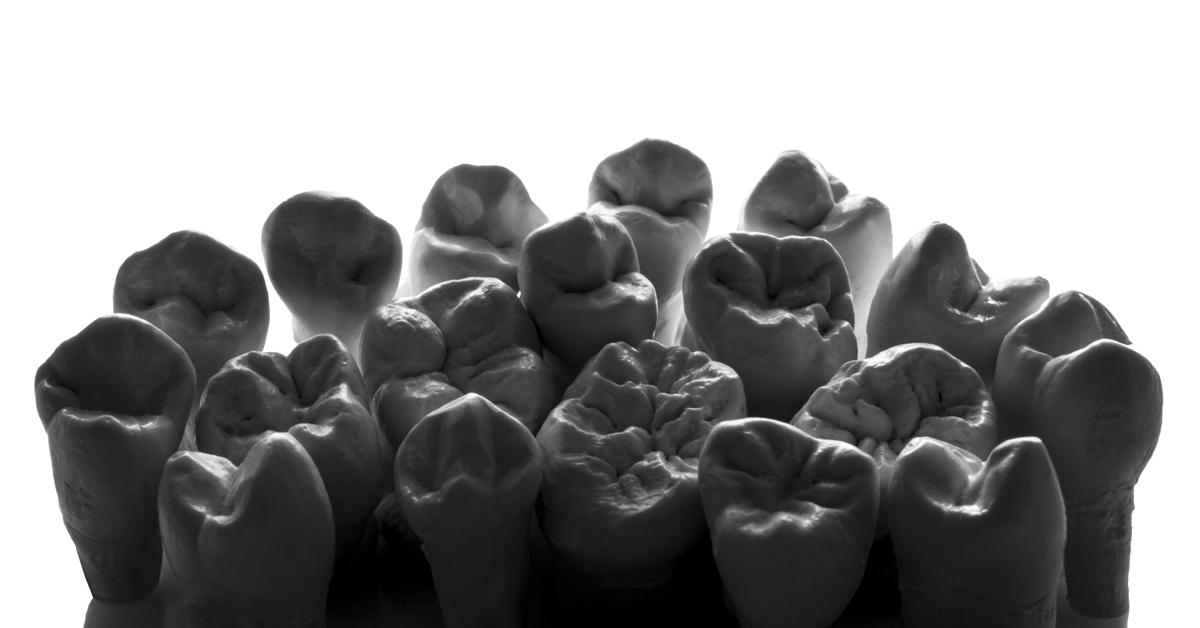 Morphology of Posterior Teeth (Module 2)